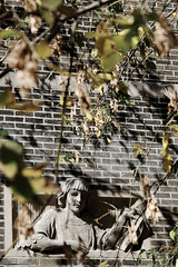 peek-a-boo (instantkamera_photography) Tags: autumn fall montreal