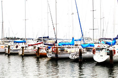 Pretty Yachts All In A Row (alisons98) Tags: canon newcastle yachts lakemacquarie