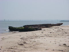 IMGP0240 (paulsyak) Tags: kayak lewes delawarebay beachplumislandshipwreck