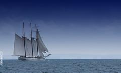 Empire Sandy dropping anchor. (Revolution Imaging) Tags: ontario sailboat boat nikon sailing ship lakeerie tallship nikkor masterphotographer empiresandy wellandcanal canaldays portcolborne 18135mm d40x amazingamateur tup2