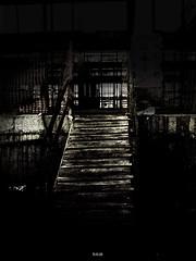 Camino hasta el fin (fotografa Juan Moreno) Tags: espaa spain kodak valladolid escalera 2008 rik pucela castillayleon parquesol z710 elrik kodakz710 kodadeasysharez710zoom