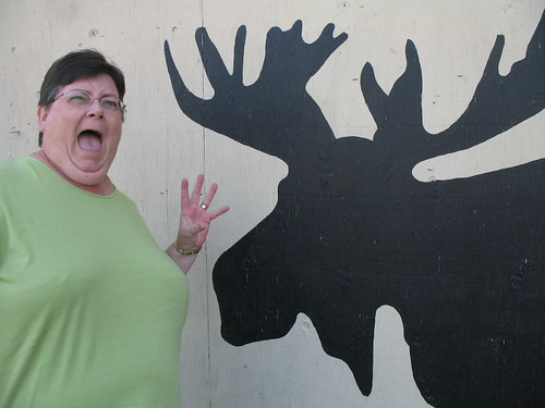 scary moose