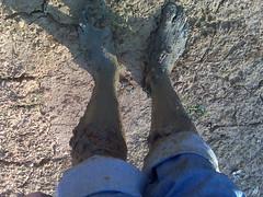 His muddy legs - but he's free at least! (Clevergrrl) Tags: georgia mud stuck augusta quicksand clarkshill thurmondlake