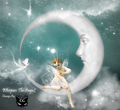 Whispers the angel (  T_ !  ) Tags: light woman moon bird love girl face angel cat stars design kid dove kuwait  q8        funtasy