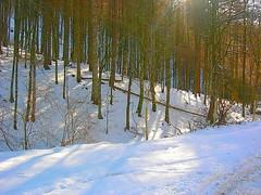 Urkiaga nieve (quintoreal) Tags: navarra eugi urkiaga quintoreal