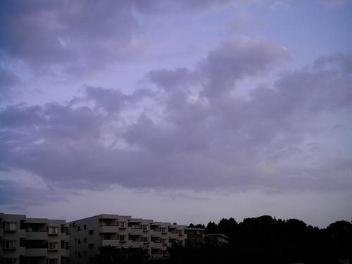 Evening glow3 (izone 550)