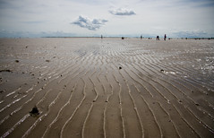 Memories (Shemer) Tags: sea sky france beach lines clouds vanishingpoint horizon lowtide leder shemer  shimritabraham