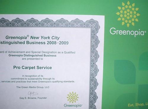 procarpetservice green cleaning