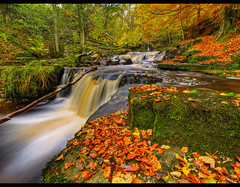 this IS autumn.....Crackpot Falls (Antony....) Tags: autumn geotagged waterfall yorkshire hdr northyorkshire hdri crackpot photomatix crackpotfalls aplusphoto crackpotwaterfall geo:lat=5436544 geo:lon=2040737
