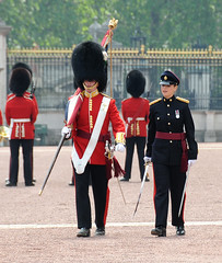 Img91562ee (veryamateurish) Tags: london buckinghampalace changingoftheguard royalguards welshguards arrc royallogisticscorps 23may2008