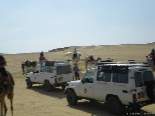 Camel Ride 13