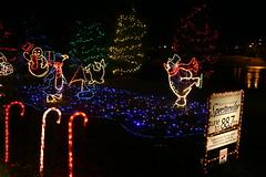 IMG_2317 (levelbest) Tags: santa christmas light holiday spectacular lights penguin dancing display twinkle led 2008 wireframe c9 c7 yaglenski