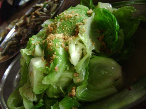 Cai Ta (vegetables)