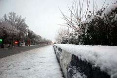 Snow - برف