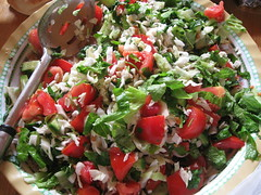 (omartalk) Tags:           plastine asi omar 2008     lettuce tomato spoon wrapped palestinian authority cooking kitchen table muslim eid aladha islamic heritage peoples palestine                    salat aus tomaten lffel