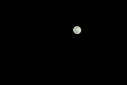 Luna decembrina