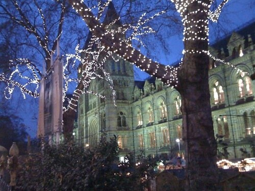 NHM at Christmas