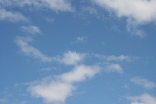 Blue sky for Christmas