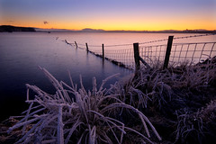 Loch Ashie - Icy Dreadlocks (freeskiing) Tags: longexposure winter mist fence scotland highlands frost december explore inverness gloaming highlandsofscotland specialpicture lochashie benthorburn