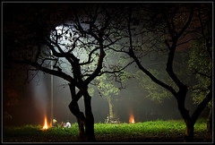 Sleepwalker's night [..Dhaka, Bangladesh..] (Catch the dream) Tags: park trees winter light mystery night fire pattern glow smoke bongo heat mysterious dhaka bengal bangladesh bangla winternight bengali volumetric wintry bangladeshi bangali volumetriclight parkatnight gettyimagesbangladeshq2