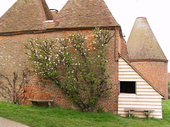 Oast House at Sissinghurst Castle (Nellynog) Tags: kent cranbrook appletree espalier englishgarden oasthouse sissinghurstcastle