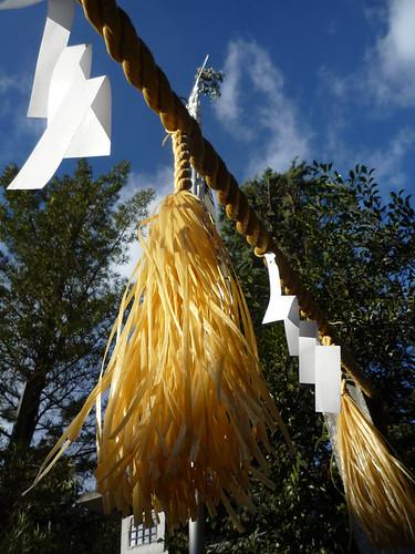 初詣 : 浅間神社ゎカワイ