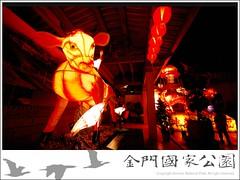 2009-元宵花燈-01