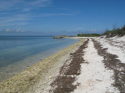 還沙灘原來的模樣,海管處提供