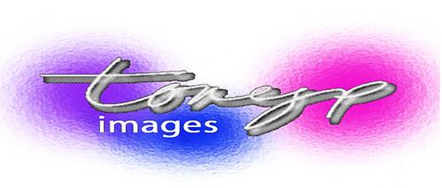 logo2006 copy