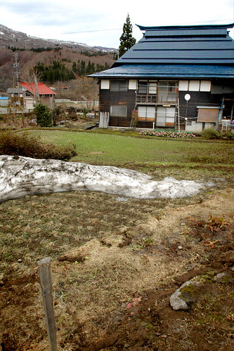 Early Spring in Tsukioka