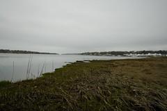 IMG_0203 copy (ryanrichardson) Tags: scenic rop wareham tidalflat