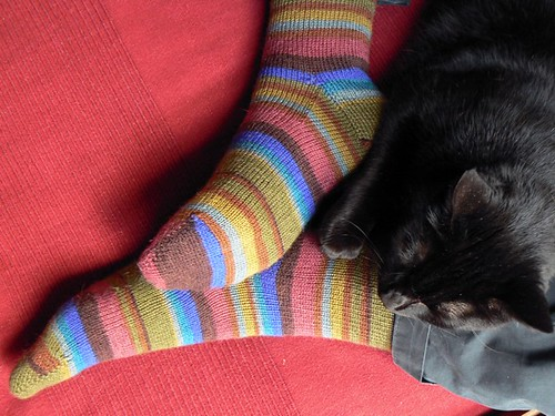 kaffe fassett earth stripe socks FO