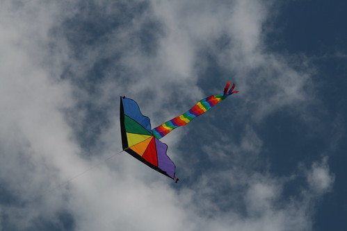 Barr's kite aloft