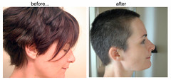 before and after haircut.jpg (galendara) Tags: haircut hair buzz bald shorthair buzzcut hairstyles butch baldwomen buzzedwomen shorthairedwomen