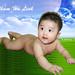 Pham Ha Photo 12