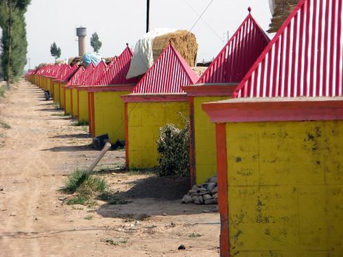 Hothouse sheds near Zhangye, Gansu Province, China