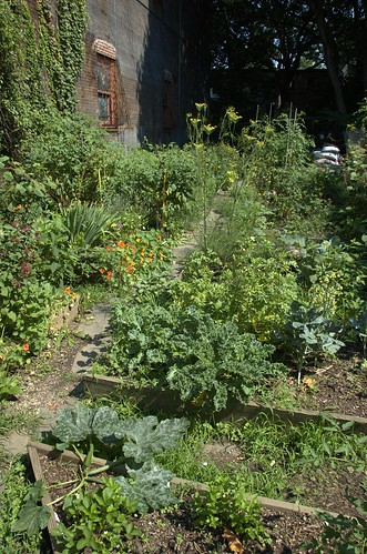St. Mark's Avenue Community Garden