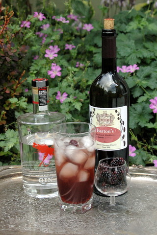 Blackberry Gin Shrub