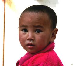 Snotty nose - la mocosa - Rotznase (alles-schlumpf) Tags: boy india girl children child kinder himalaya leh indien nase mdchen ladakh junge snottynose rotz mocosa mocoso rotznase menschenkinder naseluft