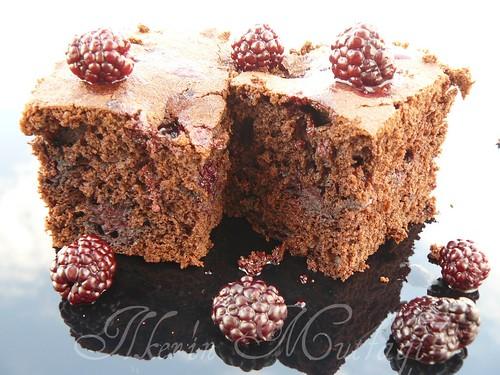 bögürtlenli kek 2