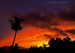 The blazing sky in the early morning sun over Santiago, Pili, Camarines Sur (Angkulet) Tags: sunrise pili camarinessur