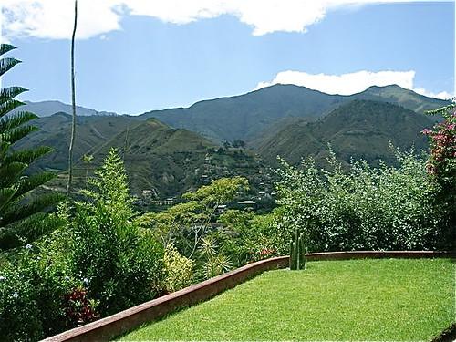 vilcabamba-ecuador-back-yard