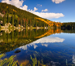 ----------------------------->--- (Fort Photo) Tags: autumn mountain lake mountains reflection fall nature landscape gold nationalpark nikon colorado seasons searchthebest nps rocky aspen rockymountainnationalpark bearlake d300 abigfave visiongroup vertorama