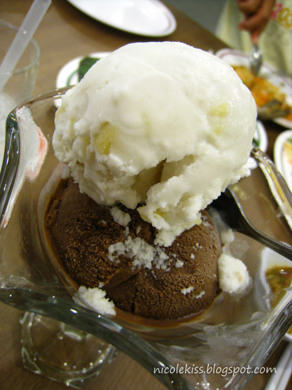 coconut and chocolate ice cream