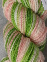 """Colleen""  Sock Yarn - Bare Sheep Yarn Company -#2 -7 Day Auction"