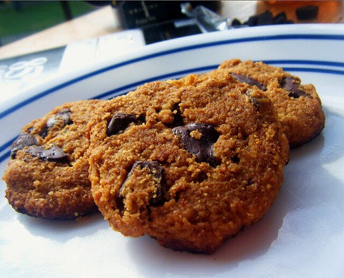 Low-Carb-Pumpkin-Chip-Cookies