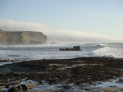 MartinsBeach_2007-056 (Martins Beach, California, United States) Photo