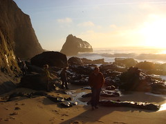 MartinsBeach_2007-192 (Martins Beach, California, United States) Photo