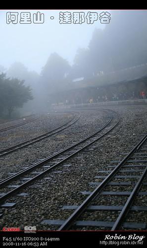 你拍攝的 20081116數位攝影_阿里山之旅029.jpg。