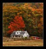 Shenandoah Valley Virginia (Bettina Woolbright) Tags: park autumn red color fall leaves landscape nationalpark autumnleaves shenandoahvalley bettina shenandoahnationalpark woolbright bettinawoolbright woolbr8stl bettinawoolbrightcom